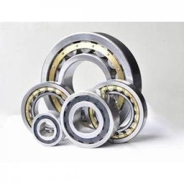 CPM2190-2432 10-6487 Double Row Cylindrical Roller Bearing 50x72.33x40mm