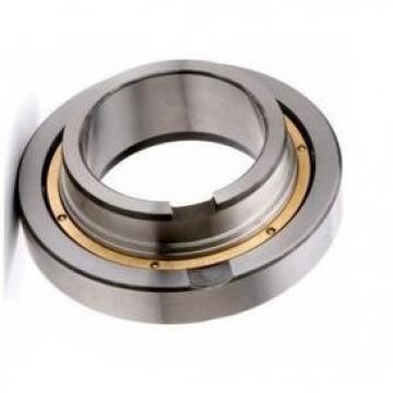 45TAC100BDDGDTDC9PN7B 4600169/649472 Ball Screw Support Ball Bearing 45x100x60mm